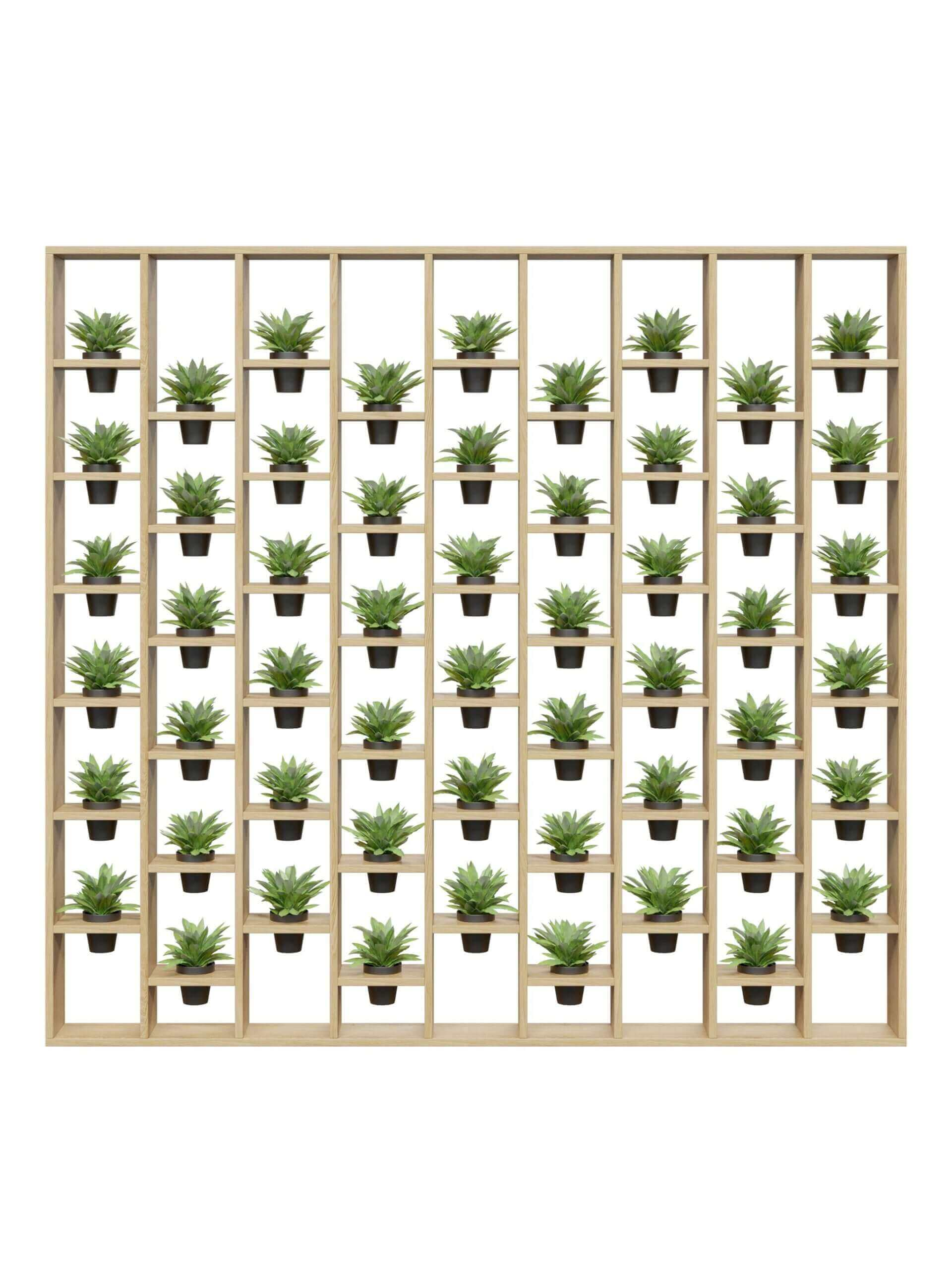 Feature / Plant Walls